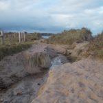 Diagnostic d'un système plage-dune sur le site de Fréval (Fermanville – 50)