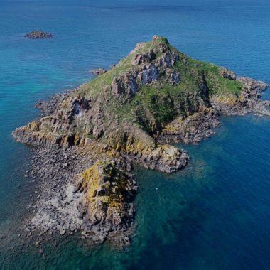 Suivi diachronique de nidification d'oiseaux marins – îlot du Verdelet (22)